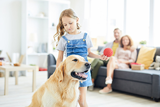 AC Maintenance for Pet Owners
